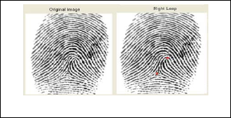research paper on fingerprints