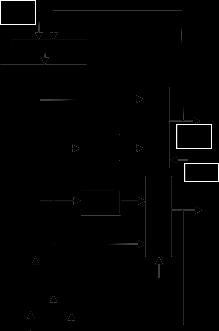 Thesis on cordic algorithm
