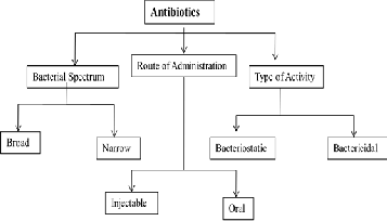 Stromectol 12mg