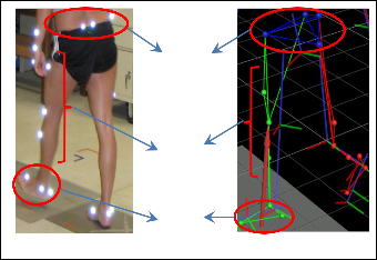 Evaluation Of The Performance Of Digital Video Analysis Of