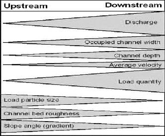 what is bradshaw model