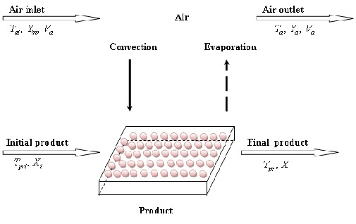 An Indirect Passive Solar Dryer for Drying
